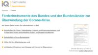 Ausschnitt der Informationsinitiative für migrantische KMU mit Corona-Hilfen